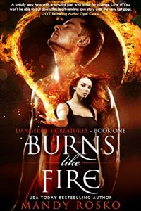 Burns Like Fire by Mandy Rosko