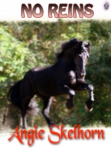 No Reins by Angie Skelhorn