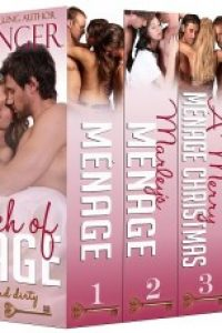 A Touch of Menage: A Ménage Romance Box Set Series – Ultimate Six-Book Collection by Jan Springer, Janet Luchinger