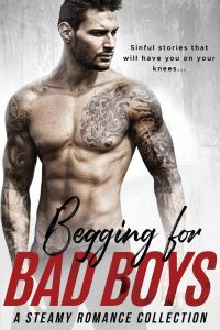 Begging for Bad Boys by Sierra Rose