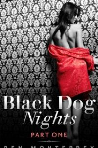 Black Dog Nights by Ren Monterrey