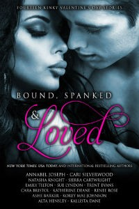 Bound, Spanked and Loved: Fourteen Valentine's Day Stories by Renee Rose