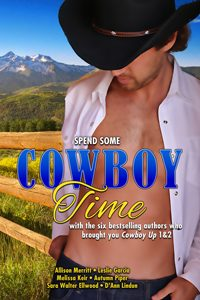 Cowboy Time by Melissa Keir