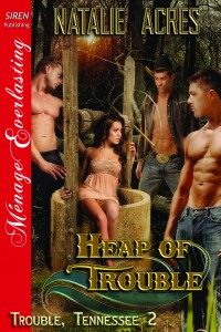 Heap of Trouble by Natalie Acres
