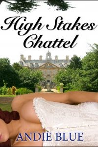 High Stakes Chattel by Andie Blue