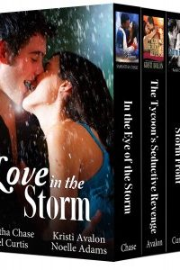 Love in the Storm (bundle of four contemporary romances) by Samantha Chase, Kristi Avalon, Rachel Curtis, Noelle Adams