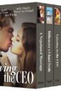 Loving the CEO (bundle of five romance novels) by Noelle Adams