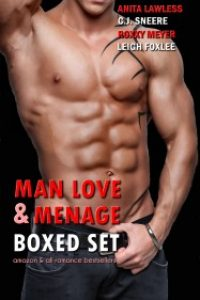 Man Love & Menage Boxed Set by Anita Lawless