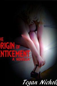Meeting the Demands, An Erotic Romance Novella by Tegan Nichols