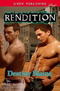 Rendition by Destiny Blaine