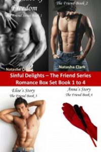 Sinful Delights Romance Boxed Set: The Friend Series Book 1 to 4 by Natasha Clark