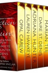 The Seduction in the Sun Box Set: 9 Sizzling Exotic Getaway Romances from Bestselling Authors  by Lauren Hawkeye, Opal Carew, Adriana Hunter, Daire St. Denis, Marian Tee, Sharon Page, Cherise Sinclair, Cat Kalen, Suzanne Rock