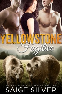 Yellowstone Fugitive (A BBW Menage Bear Shifter Romance) by Saige Silver