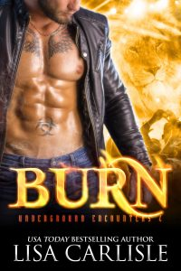 BURN (a shifter and vampire rock star romance) by Lisa Carlisle