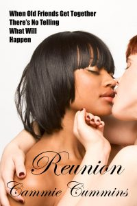 Reunion by Cammie Cummins