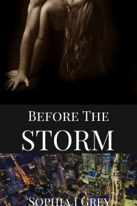 Before the storm by Sophia J Grey