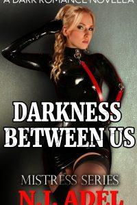 Darkness Between Us by N.J. Adel