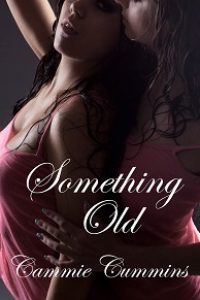 Something Old by Cammie Cummins
